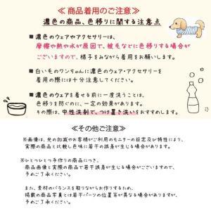 犬 服 ワンピース 秋 冬 花柄 犬の服 新作 きゃんナナ ドッグウェア ブランド|cannanaonline|11