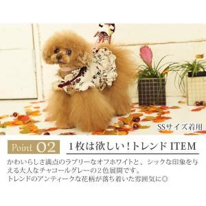 犬 服 ワンピース 秋 冬 花柄 犬の服 新作 きゃんナナ ドッグウェア ブランド|cannanaonline|05