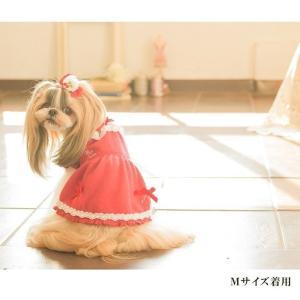 犬 服 ワンピース 秋 冬 さくらんぼ 犬の服 新作 きゃんナナ ドッグウェア ブランド|cannanaonline|13