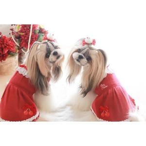 犬 服 ワンピース 秋 冬 さくらんぼ 犬の服 新作 きゃんナナ ドッグウェア ブランド|cannanaonline|20