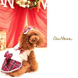 犬 服 ワンピース 秋 冬 ボア 犬の服 新作 きゃんナナ ドッグウェア ブランド|cannanaonline|02