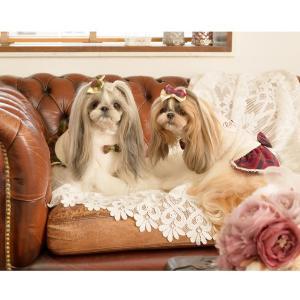 犬 服 ワンピース 秋 冬 ボア 犬の服 新作 きゃんナナ ドッグウェア ブランド|cannanaonline|12