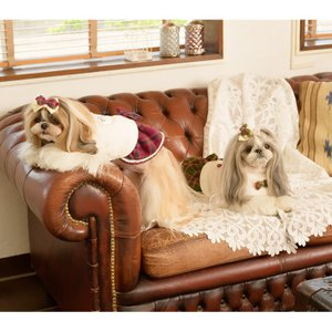 犬 服 ワンピース 秋 冬 ボア 犬の服 新作 きゃんナナ ドッグウェア ブランド|cannanaonline|13