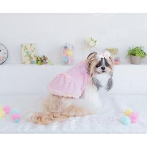 犬 服 ワンピース 秋 冬 ふわもこ 犬の服 新作 きゃんナナ ドッグウェア ブランド cannanaonline 12