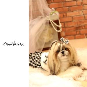 犬 服  秋 冬  犬の服 新作 きゃんナナ ドッグウェア ブランド|cannanaonline|12