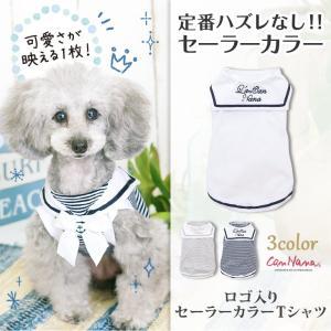 犬 服  春 夏 マリン Tシャツ  犬の服 新作 きゃんナナ ドッグウェア ブランド|cannanaonline