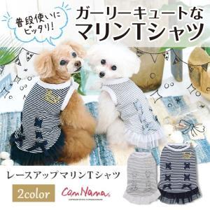 犬 服  春 夏 レース フリル マリン Tシャツ  犬の服 新作 きゃんナナ ドッグウェア ブランド cannanaonline