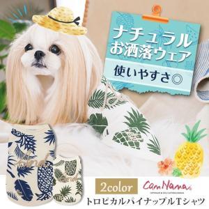 犬 服  春 夏 トロピカル Tシャツ  犬の服 新作 きゃんナナ ドッグウェア ブランド|cannanaonline