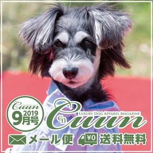 送料無料 Cuun2019 クーン 9月10日号 雑誌 情報誌 犬の本|cannanaonline
