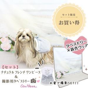 背景 タペストリー 写真 フォト ワンピース ウェア セット 犬 服  ブランド きゃんナナ|cannanaonline