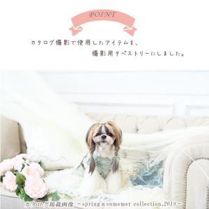 背景 タペストリー 写真 フォト ワンピース ウェア セット 犬 服  ブランド きゃんナナ|cannanaonline|03