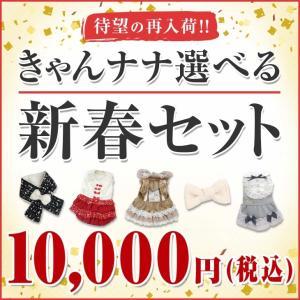 犬 服  福袋 犬用 アクセサリー アクセ ドッグウェア きゃんナナ ブランド|cannanaonline