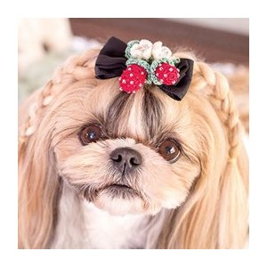 犬 アクセサリー  リボン さくらんぼ  ワンタッチ 簡単 きゃんナナ ブランド|cannanaonline