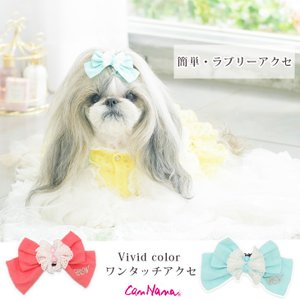 犬 アクセサリー アクセ  リボン 可愛い  ビビットカラー  ワンタッチ  簡単 きゃんナナ ブランド cannanaonline