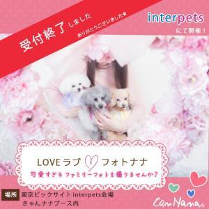 インターペット イベント 犬 写真 家族  犬の服 ドッグウェア きゃんナナ|cannanaonline