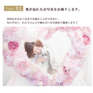 インターペット イベント 犬 写真 家族  犬の服 ドッグウェア きゃんナナ|cannanaonline|03