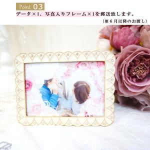 インターペット イベント 犬 写真 家族  犬の服 ドッグウェア きゃんナナ|cannanaonline|07