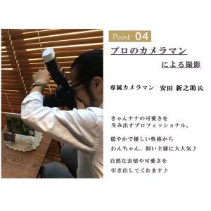 インターペット イベント 犬 写真 家族  犬の服 ドッグウェア きゃんナナ|cannanaonline|08