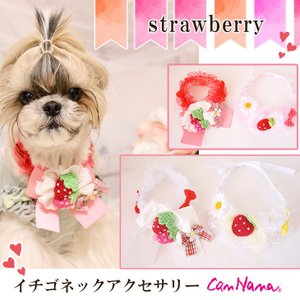 犬用 いちご アクセサリー  シュシュ  ネック ドッグウェア ブランド きゃんナナ|cannanaonline