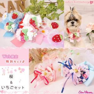 犬用 桜 いちご アクセサリー シュシュ   ドッグウェア ブランド きゃんナナ|cannanaonline