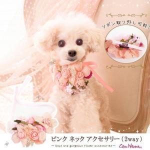 犬 アクセ  花 ピンク ヘッド ネック 結ぶ きゃんナナ ドッグウェア ブランド|cannanaonline