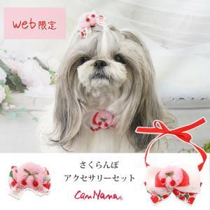 犬用  さくらんぼ チェリー アクセサリー 春 シュシュ ドッグウェア ブランド きゃんナナ|cannanaonline