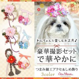 犬 お正月 アクセサリー リボン 犬用 しめ飾り ドッグウェア ブランド きゃんナナ|cannanaonline