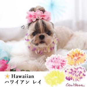 犬用 レイ ハワイ アクセサリー 夏 花 シュシュ ドッグウエア ブランド きゃんナナ|cannanaonline