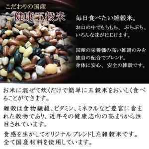 国産健康五穀米 1kg(200g×5袋) もち麦 大豆 黒米 赤米 もちあわ 雑穀米|car-media|02