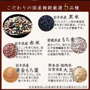 国産健康五穀米 1kg(200g×5袋) もち麦 大豆 黒米 赤米 もちあわ 雑穀米|car-media|03