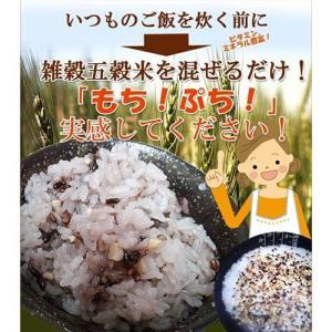 送料無料! 国産健康五穀米 10kg(200g×50袋) 業務用 もち麦 大豆 黒米 赤米 もちあわ 雑穀米 car-media 04