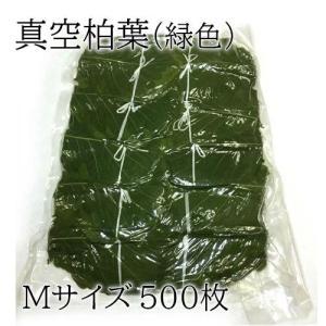 真空柏葉(緑色)Mサイズ 500枚|car-media