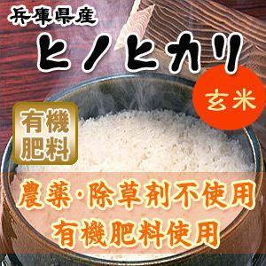 無農薬・有機肥料100%!兵庫県産ヒノヒカリ玄米10kg 産地直送!|car-media