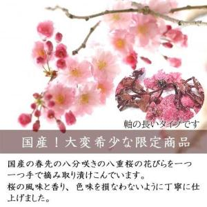 無添加の桜花漬け(さくらの花の塩漬け) 1kg|car-media|02
