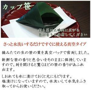 真空カップ笹 200枚入×1パック|car-media|02