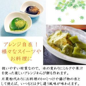 送料無料!蕨粉 極(わらびこ きわみ)500g 京都のわらび餅|car-media|04