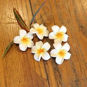 プルメリア 造花 スポンジ 飾り ホワイト 5個入り 5cm|caran2