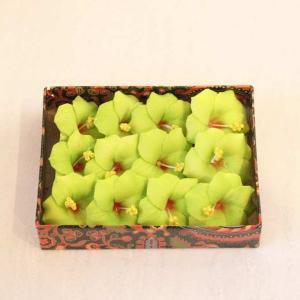 プルメリア スポンジ 造花 飾り イエローグリーン 12個入り|caran2