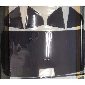 アルファード 型式 AGH35W/GGH35W/AGH30W/GGH30W カット済み カーフィルム|carclinic