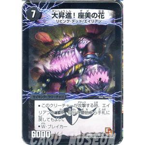 デュエルマスターズ 大昇進!座美の花(デッキ限定)/DMD04/最強国技/デュエマ|card-museum