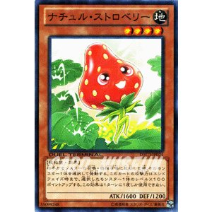 遊戯王カード ナチュル・ストロベリー / クロニクルIII破滅の章(DTC3) / シングルカード card-museum