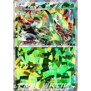 ポケモンカードゲームBW/ジャローダ/プロモーションカード|card-museum