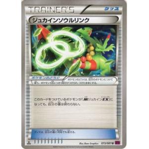 ポケモンカードゲームXY/ジュカインソウルリンク/XY7 バンデットリング|card-museum