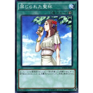 遊戯王 禁じられた聖杯 ウィング・レイダーズ(SPWR) シングルカード SPWR-JP041-N card-museum
