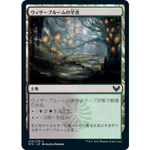 MTG マジック:ザ・ギャザリング ウィザーブルームの学舎 コモン ストリクスヘイヴン:魔法学院 STX-275 日本語版 土地 土地|card-museum