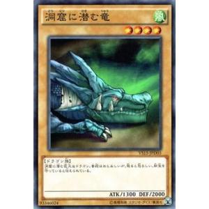 遊戯王 洞窟に潜む竜 デュエリストエントリーデッキ VS|card-museum