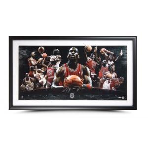 マイケル・ジョーダン 直筆サインフォトプラーク  Michael Jordan Autographed & Framed Hall of Fame Collage 123枚限定!|cardfanatic