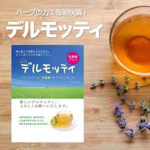 ダイエット茶 デルモッティ 公式 オーガニック天然素材ハーブ...