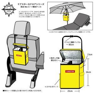 クーラーバッグ 保冷 バッグ 防水 ブラック カナロア ソフト ポータブル ランチバグ キャンプ バーベキュー 小型 小さい 大容量 携帯 車 カー シート CARESTAR|carestar|10