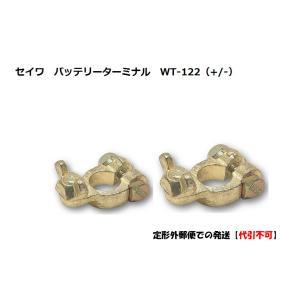 【メール便で発送】セイワ バッテリー ターミナル WT-122+ WT-122- D端子【代引不可】 carmeister